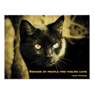 Black Cat Meme with Irish proverb Poster