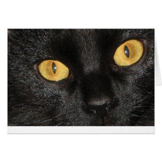 Black Cat Notecard