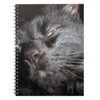Black Cat - Oh Yeah Come and Get It Notebook
