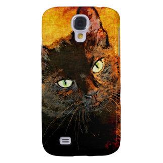 BLACK CAT OLIVE