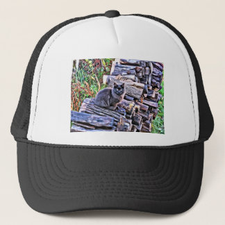 Black cat on a pile of wood trucker hat