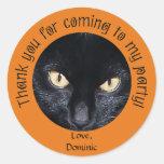 Black Cat Orange Halloween Thank You Stickers
