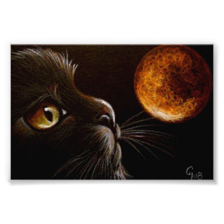 BLACK CAT PROFILE ORANGE MOON HALLOWEEN NIGHT PHOTOGRAPHIC PRINT