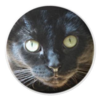 Black Cat Pull