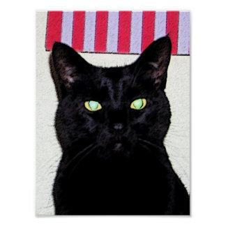 Black Cat / Red White Blue Poster