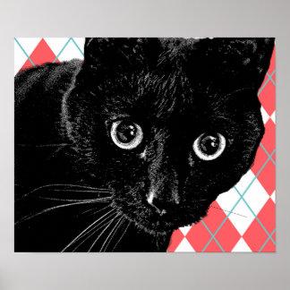 Black Cat Red White Harlequin Pattern Poster