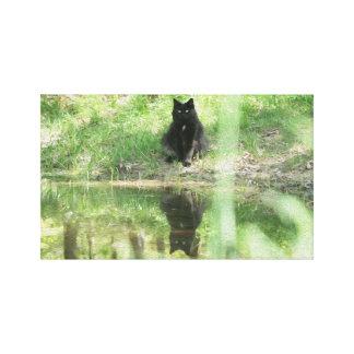 Black Cat Reflections Canvas Oil Print