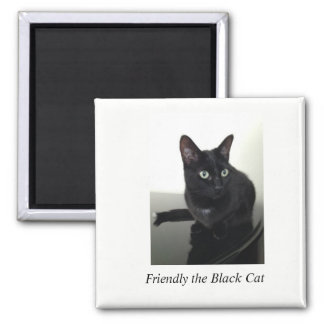 Black Cat Refrigerator Magnet - square