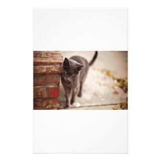 Black Cat Rubs Against A Brick Wall Stationery
