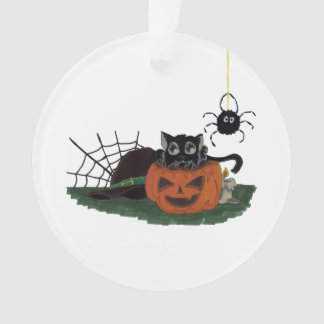 Black Cat sits on a Jack o Lantern with Spider