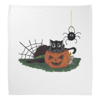 Black Cat sits on a Jack o Lantern with Spider Bandana