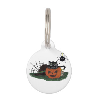 Black Cat sits on a Jack o Lantern with Spider Pet Tag