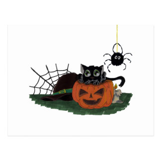 Black Cat sits on a Jack o Lantern with Spider Postcard