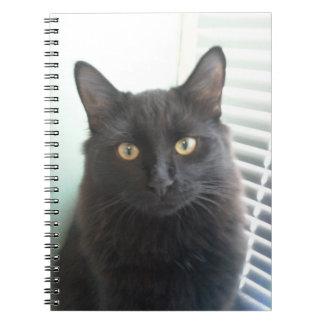 Black Cat Spiral Notebooks