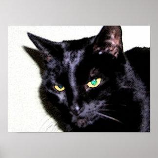Black Cat Sumio Poster
