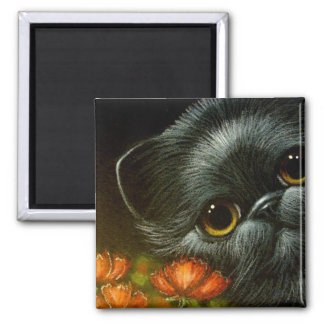 BLACK CAT w POPPY FLOWERS Magnet