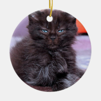 BLACK CAT WITH BLUE EYES ORNAMENT
