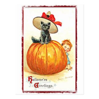 Black Cat with Hat Vintage Halloween Postcard