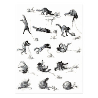 Black cat & Woolen yarn ball, Alexandre Steinlen Postcard
