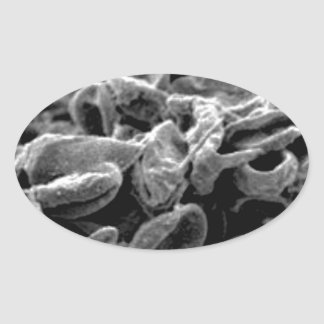 black cells or bacteria oval sticker