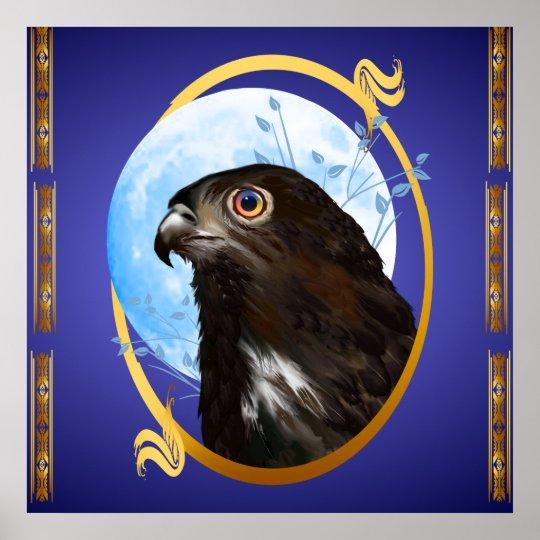 Black-chested snake eagle poster
