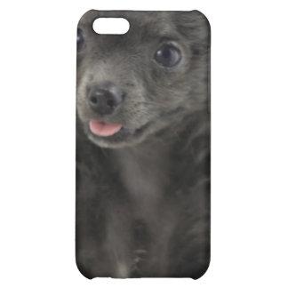 Black Chihuahua  iPhone 4 Case