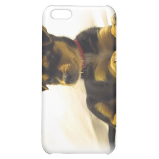 Black Chihuahua Puppy iPhone Case iPhone 5C Covers