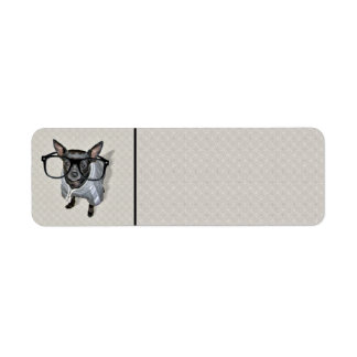 Black Chihuahua with Glasses Photo