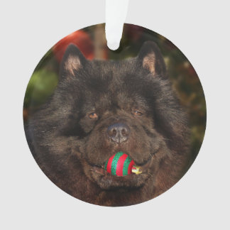 Black chow dog Christmas Ornament