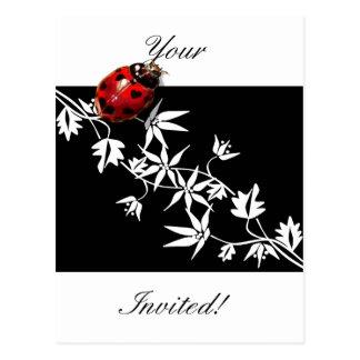 Black clematis ladybug heart design postcard