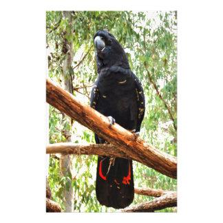 BLACK COCKATOO QUEENSLAND AUSTRALIA STATIONERY