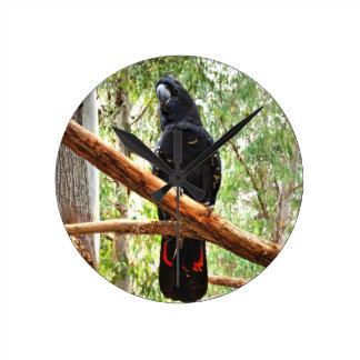BLACK COCKATOO QUEENSLAND AUSTRALIA WALL CLOCK