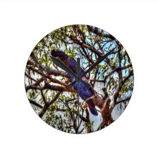 BLACK COCKATOO'S IN RURAL QUEENSLAND AUSTRALIA WALLCLOCK