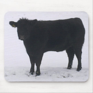 Black Cow in Snow Mousepad