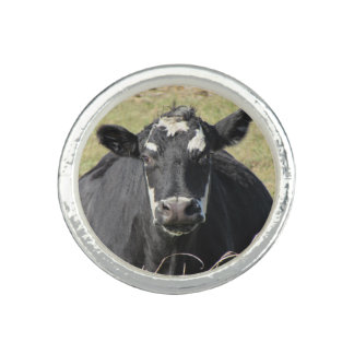 Black Cow Ring