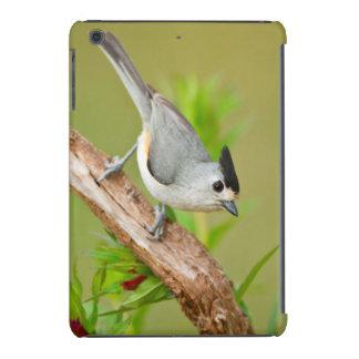 Black-Crested Titmouse iPad Mini Case