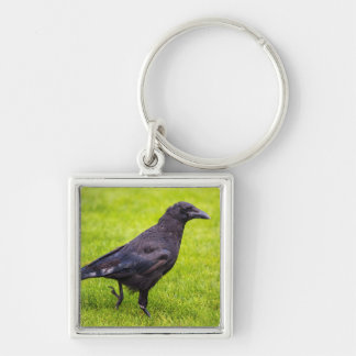 Black crow keychain
