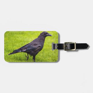 Black crow luggage tag