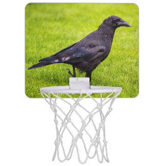 Black crow mini basketball hoop