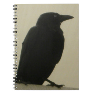 Black Crow Notebook