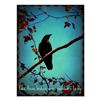 Black Crow On Tree Branch Original Photo Design Poster