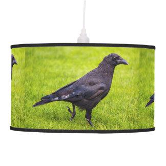 Black crow pendant lamp