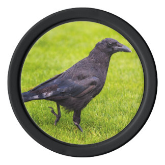 Black crow poker chips