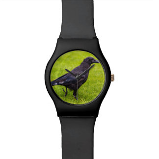 Black crow wrist watches