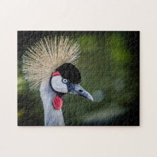 Black crowned crane 02 Digital Art - Photo Puzzle