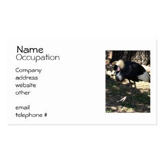 Black Crowned Crane Business Cards