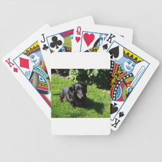 Black Dachshund Bicycle Playing Cards