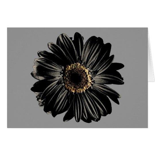 Black Daisy Card