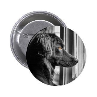 Black dog 2 inch round button