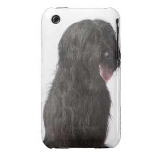 Black dog, Briard iPhone 3 Covers